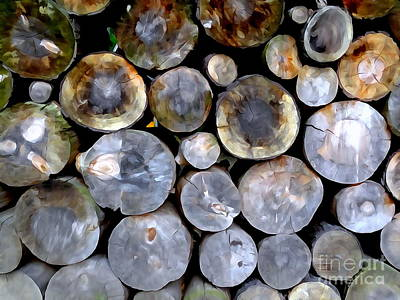Digital Art - The Wood Pile by Ed Weidman
