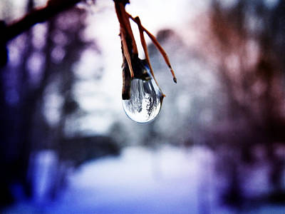 Photograph - The World In A Drop by Zinvolle Art
