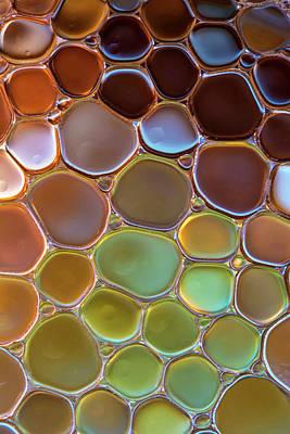Photograph - The World Of Bubbles II by Jaroslaw Blaminsky