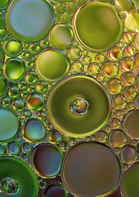 Photograph - The World Of Bubbles by Jaroslaw Blaminsky