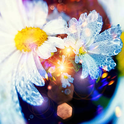 Digital Art - The World Of Dancing Flowers by Mikko Tyllinen