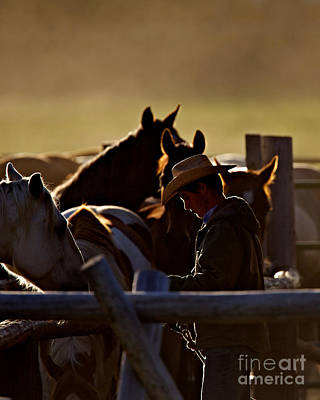 Working Cowboy Photograph - The Wrangler by Daryl L Hunter