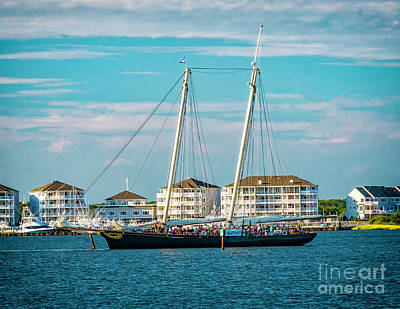 Historic Schooner Photograph - The Yacht America by Nick Zelinsky