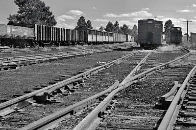 Photograph - The Yard by Ron Cline