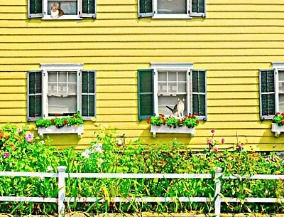 Of Cats Photograph - The Yellow House by Diana Angstadt