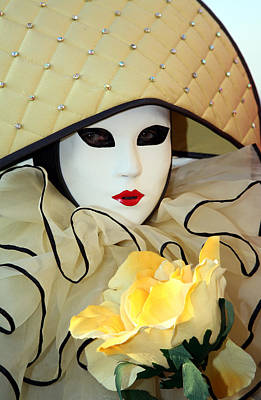 Photograph - The Yellow Rose by Donna Corless
