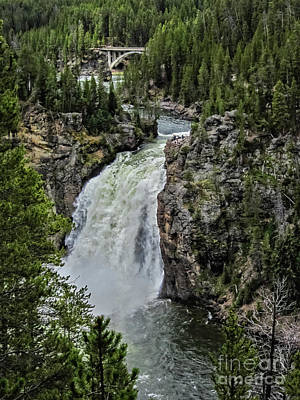 Photograph - The Yellowstone Upper Falls by Robert Bales