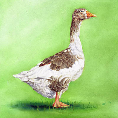 Painting - The Young Goose by Richard Mountford