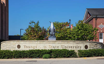 Youngstown Ohio Photograph - The Youngstown State University Penguin by Mountain Dreams