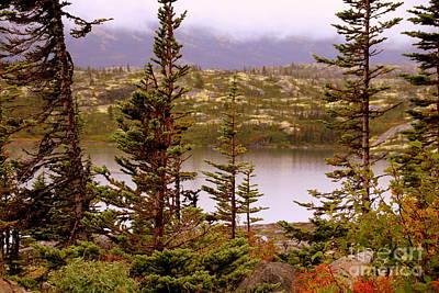 Photograph - The Yukon by Lennie Malvone