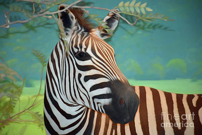 Photograph - The Zebra by Ray Shrewsberry