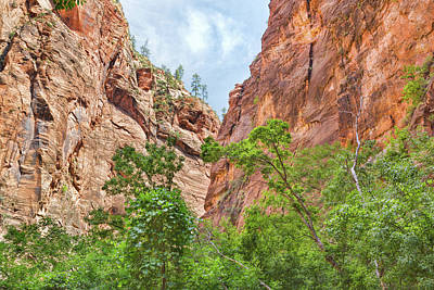 Photograph - The Zion Canyon Narrows by John M Bailey