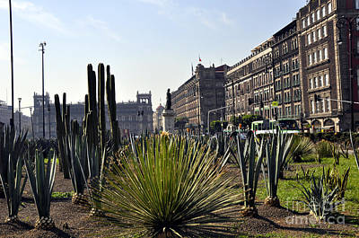 Photograph - The Zocalo 4 by Andrew Dinh