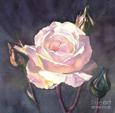 Thea's Rose Art Print by Sandra Phryce-Jones