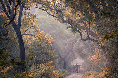 Photograph - Their Morning, Bharatpur, 2005 by Hitendra SINKAR