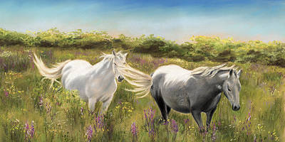Painting - Thelma And Louise Connemara Ponies by Vanda Luddy