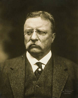 Photograph - Theodore Roosevelt by Artistic Panda