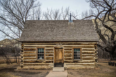 Theodore Roosevelt Cabin Print by Paul Freidlund