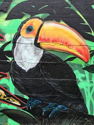Photograph - There Is A Toucan On The Wall by Alice Gipson