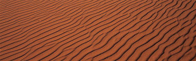 These Are The Pink Sand Dunes In Coral Art Print by Panoramic Images