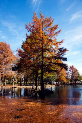 Photograph - Theta Pond by Lana Trussell