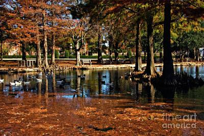 Oklahoma State University Photograph - Theta Waterfowl by Lana Trussell