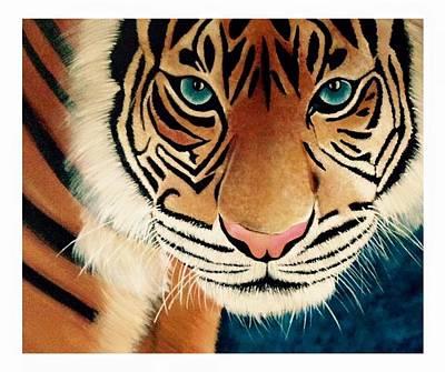 The Tiger Painting - The Tiger by Shernaz Pochkhanawala