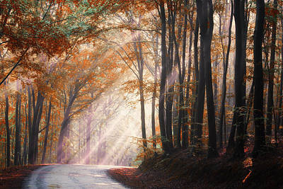 They Coming From Heaven Art Print by Janek Sedlar