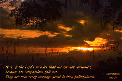 Photograph - They Faithfulness by Sheri McLeroy