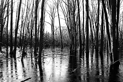 Photograph - Thin Ice Black And White by Debbie Oppermann