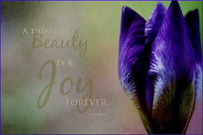 Thing Of Beauty Art Print by Bonnie Bruno