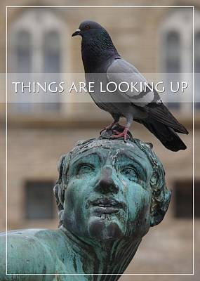 Photograph - Things Are Looking Up - Card Or Poster by Patricia Strand