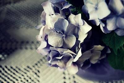 Photograph - Things by Marija Djedovic