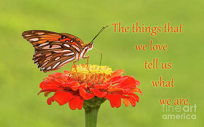 Photograph - Things We Love by Sari ONeal