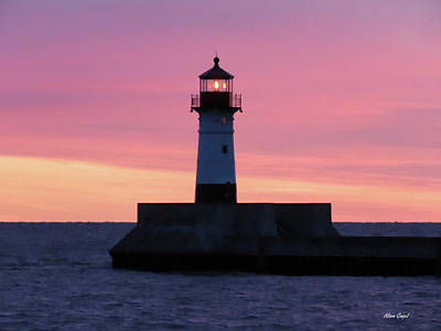 Duluth Photograph - Think Pink by Alison Gimpel