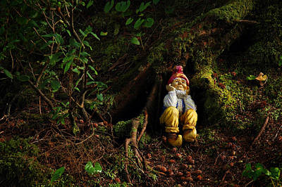 Photograph - Thinking Gnome by Harry Spitz