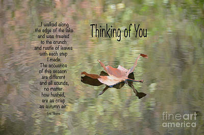 Photograph - Thinking Of You by Debby Pueschel