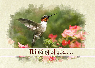 Mixed Media - Thinking Of You Hummingbird Garden Jewel Greeting Card by Christina Rollo