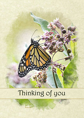 Photograph - Thinking Of You Monarch Butterfly Greeting Card by Christina Rollo