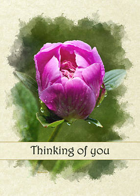 Photograph - Thinking Of You Pink Peony Flower Greeting Card by Christina Rollo