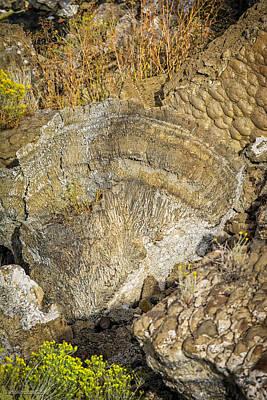 Photograph - Thinolite Tufa Formations Pyramid Lake by LeeAnn McLaneGoetz McLaneGoetzStudioLLCcom