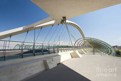 Rowing Royalty Free Images - Third millenium bridge, Zaragoza, Aragon, Spain Royalty-Free Image by Francisco Javier Gil Oreja