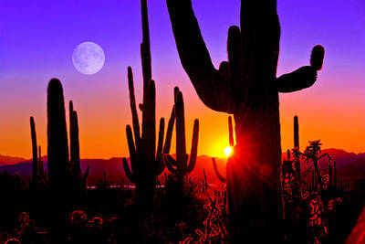 Third Sunset At Saguaro Art Print