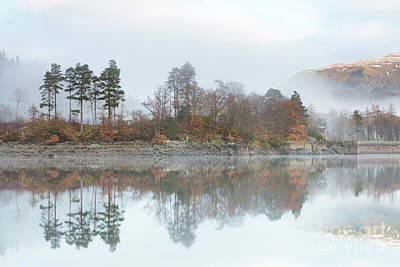 Thirlmere Reflections Art Print by Tony Higginson