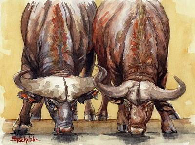Painting - Thirsty Buffalo  by Margaret Stockdale