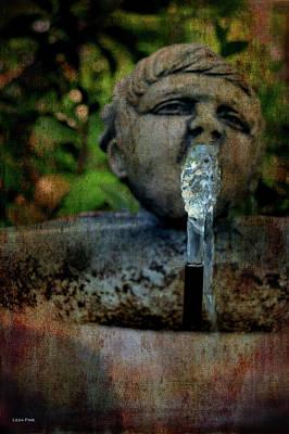 Photograph - Thirsty Garden Art by Lesa Fine