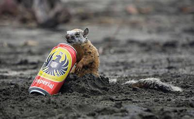 Photograph - Thirsty Squirrel  by John Pierpont