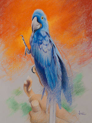 Art Print featuring the painting This Bird Had Flown by Joe Winkler