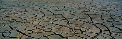 This Is A Pattern In Dry, Cracked Mud Art Print