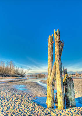 This Is British Columbia No.43 - Frost On The Fraser Art Print by Paul W Sharpe Aka Wizard of Wonders